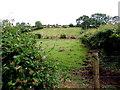 H5571 : Bracky Townland by Kenneth  Allen