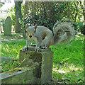TG5208 : Got any nuts? by Adrian S Pye