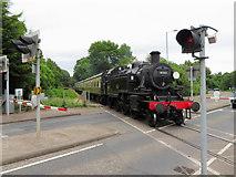 SO6302 : Dean Forest Railway in Lydney by Gareth James