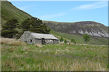 ND2099 : Ruined Cottage by Anne Burgess