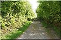 SS6944 : Track to Roe Barrow by Bill Boaden