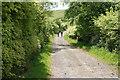 SS6944 : Track to Chapman Barrows by Bill Boaden
