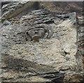 SO8729 : Deerhurst - St Mary's church - The Angel by Rob Farrow