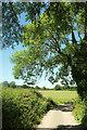 SE3074 : Ripon Rowel Walk at Ripon Parks by Derek Harper