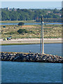 O2234 : Dublin Harbour, Realt na Mara Statue by David Dixon