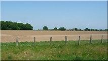 TG0604 : Bare field, south of Brickkiln Grove by Christine Johnstone