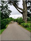 W7871 : Gateway to Fota House and Gardens by David Dixon