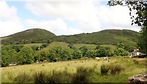 J0125 : Sugarloaf Hill on Sturgan Mountain by Eric Jones