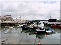 W7966 : Cobh Harbour by David Dixon