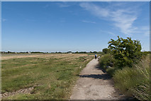 SD3642 : A riverside path in Wyre Estuary Country Park by Ian Greig