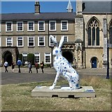 """TG2308 : GoGoHares - Norvicenses Salients """"Sally"""" by Evelyn Simak"""