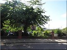 TQ1875 : Homebase on Manor Road, North Sheen by David Howard