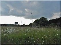 SP0856 : Central reservation on Stratford Road, Alcester by David Howard