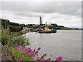 S5913 : River Suir, Quay at Bilberry Industrial Estate by David Dixon