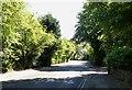 SD7410 : Stitch Mi Lane in Harwood by Philip Platt