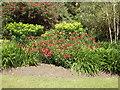 NX1160 : Castle Kennedy Walled Garden by Jon Alexander