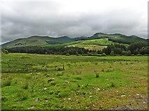 NN3724 : Boggy pasture, Glen Falloch by Roger Cornfoot