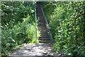 SO1903 : Steps! on NCR 466 by M J Roscoe