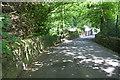 SE0624 : View along Steps Lane by Roger Templeman