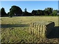 SO8742 : Hay bales in Earl's Croome by Philip Halling