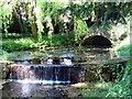 SU8394 : The Water Garden in West Wycombe Park by Steve Daniels