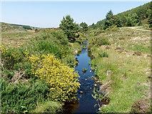 NH6777 : Outflow from Loch Sheilah by Julian Paren