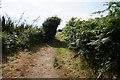SV9211 : Coastal path towards Gap Point, St Mary's by Ian S