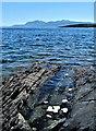 NS0360 : St Ninian's Point - Isle of Bute by Raibeart MacAoidh