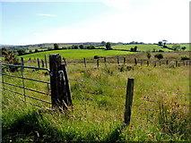 H3990 : Drumnahoe Townland by Kenneth  Allen