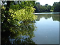 TQ5156 : Reflections in the West Lake at Sevenoaks Wildlife Reserve by Marathon