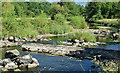 J3269 : The River Lagan, Shaw's Bridge, Belfast - July 2018(4) by Albert Bridge