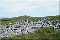 NY7723 : Rash of boulders on Little Fell by Trevor Littlewood
