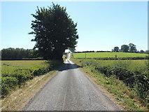 H4963 : Letfern Road, Letfern by Kenneth  Allen
