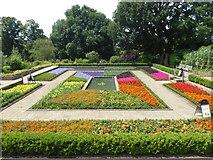 TQ3473 : The Dye Garden at Horniman Gardens by Marathon