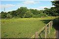 SU1130 : Meadow by Lower Road by Derek Harper