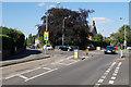 SO8897 : Mini roundabout in Finchfield by Bill Boaden