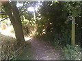 TM3977 : Footpath to Loam Pit Lane by Adrian Cable