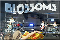 NS5964 : Blossoms on stage at TRNSMT, Glasgow Green by Mike Pennington