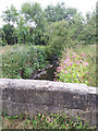 SE3435 : Bridge over the Wyke Beck by Stephen Craven