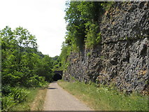SK1272 : Monsal Trail: approach to eastern portal of Rusher Cutting Tunnel by Gareth James