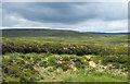 NY7825 : Peat bank at stream edge by Trevor Littlewood