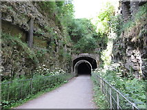 SK1871 : Monsal Trail: eastern portal of Headstone Tunnel by Gareth James