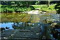 NT6224 : Ancrum Ford by John Walton