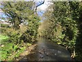 NZ2542 : River Browney by David Robinson