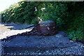 W7865 : Mooring bollard at Whitepoint by Ian S