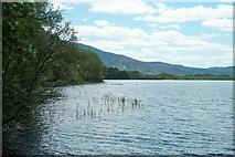 NH9718 : Loch Garten, Abernethy Forest by Mike Pennington