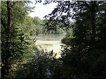 SE2712 : Yorkshire Sculpture Park: Upper Lake by Rudi Winter