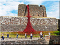 NY3956 : 'Weeping Window' poppy sculpture, Carlisle Castle (1) by Rose and Trev Clough
