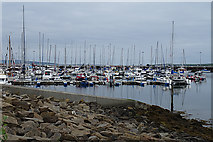 HY4511 : Kirkwall Marina by Anne Burgess