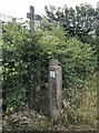 SJ7948 : Stile and signpost on farm track by Jonathan Hutchins